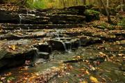 14th Oct 2013 - Autumn Falls
