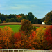 Autumn Glory by skipt07