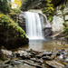 Looking Glass Falls by cdonohoue
