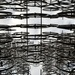 forever bicycles by summerfield