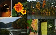 20th Oct 2013 - Sunday Morning Collage