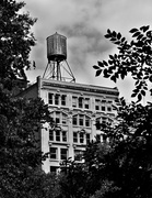 23rd Oct 2013 - Water tower from Madison Square Park