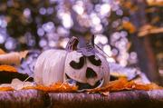 15th Oct 2013 - Light Pumpkin
