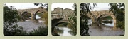 24th Oct 2013 - Atcham Bridge