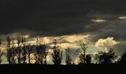 25th Oct 2013 - Dark Afternoon Skies