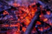 24th Oct 2013 - Campfire Memories
