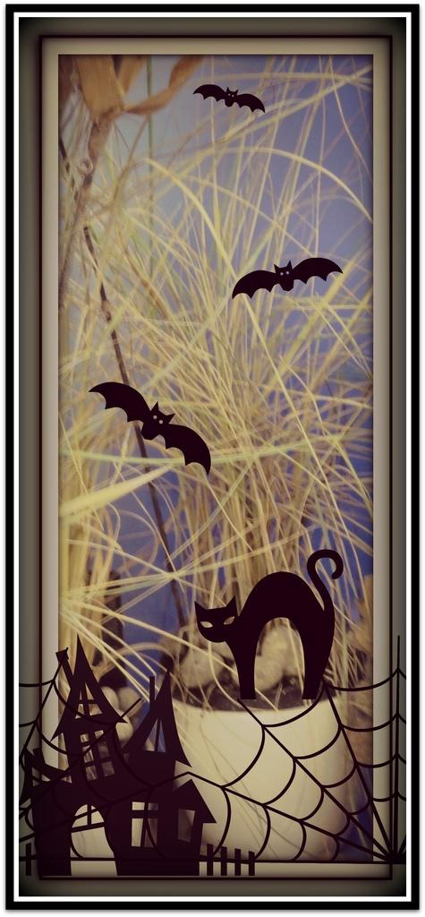 Spooky by beryl