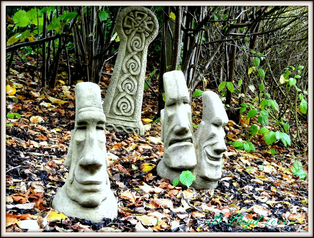 Why the long faces ?? by beryl