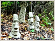 30th Oct 2013 - Why the long faces ??
