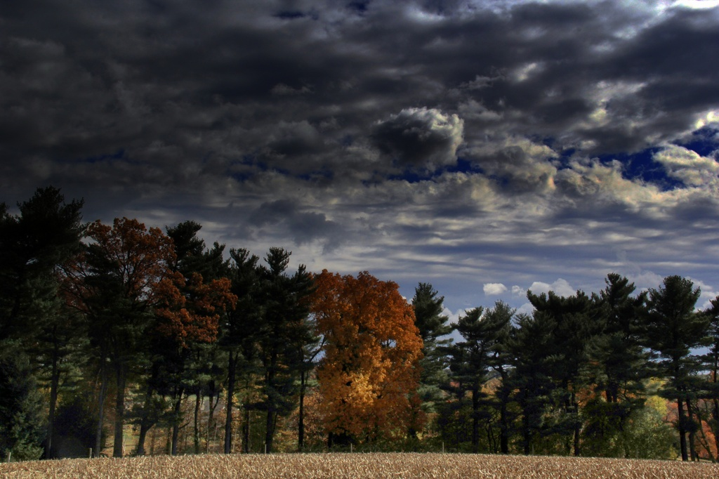 A Cloud Filled Autumn Day by digitalrn