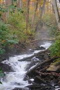 2nd Nov 2013 - Fall at the Falls