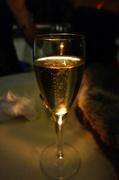 4th Nov 2013 - Champagne !