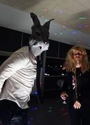 5th Nov 2013 - Roger rabbit and Jessica
