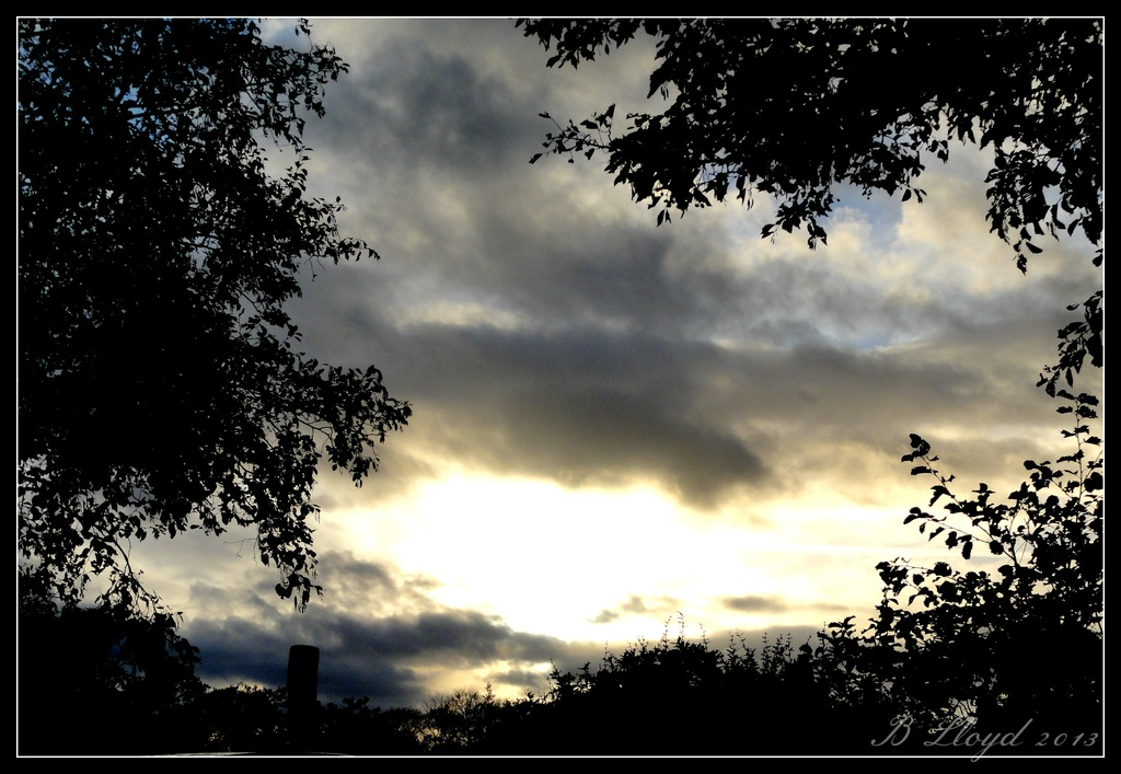 Evening sky by beryl