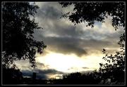 10th Nov 2013 - Evening sky