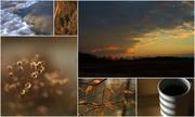 10th Nov 2013 - Sunday Morning Collage