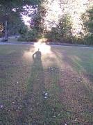 10th Sep 2010 - Long Shadow