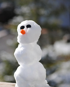 12th Nov 2013 - First Snow Dude of the Season