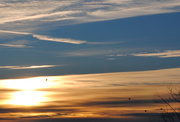 13th Nov 2013 - An Early Morning Flight