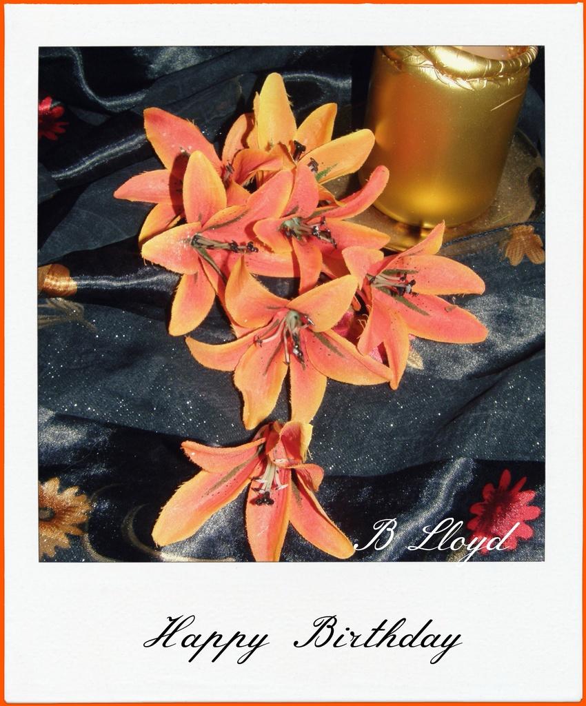 Happy Birthday  by beryl