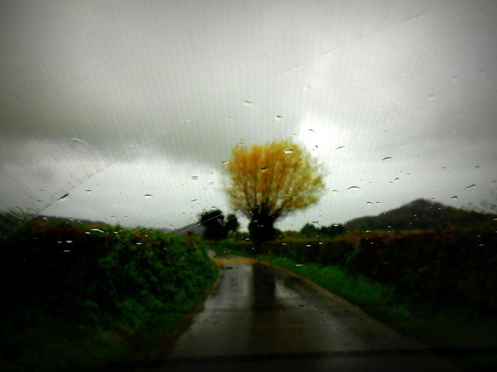 A rainy day... by snowy