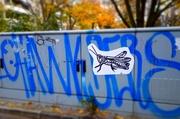 19th Nov 2013 - Giant grasshopper