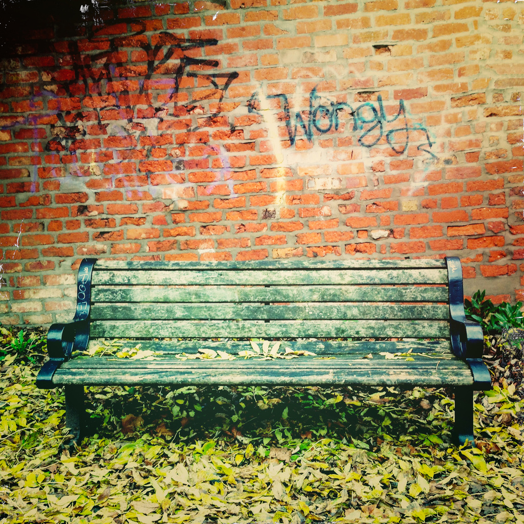 Wongy's bench by jocasta