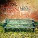 Wongy's bench by jocasta