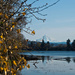 Mt. Hood From Blue Lake by vickisfotos