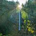 Latourell Falls, Columbia River Gorge, Oregon by vickisfotos
