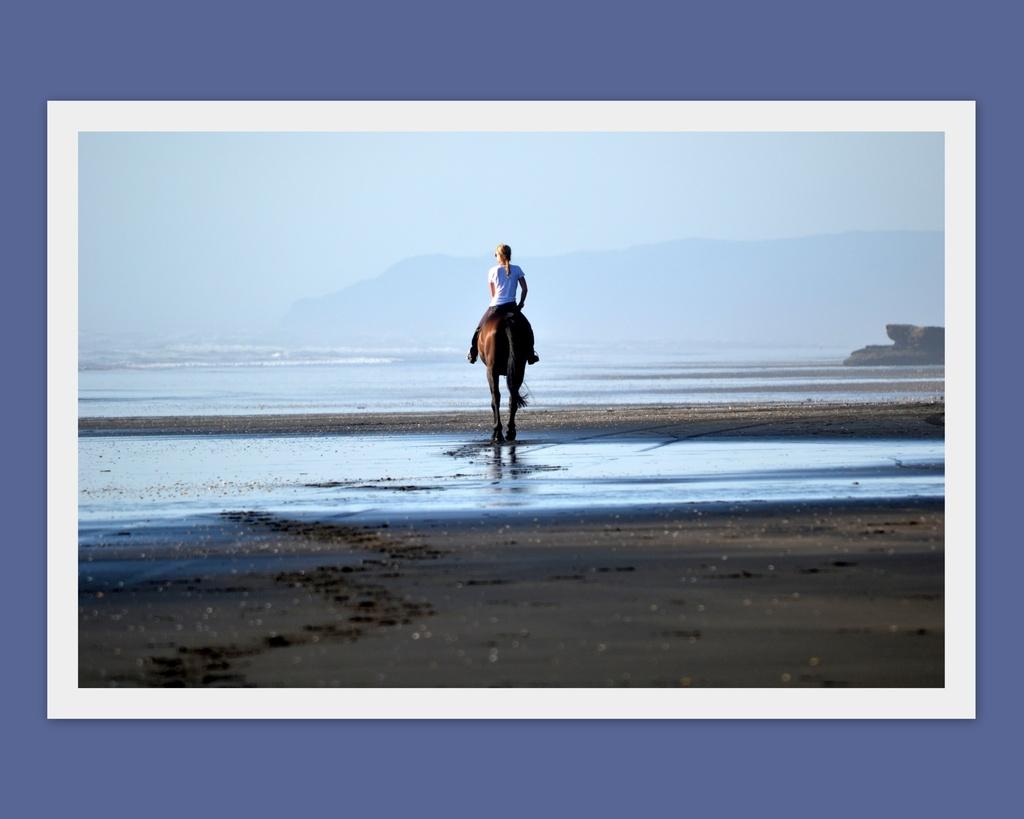 A Beach gallop.... by julzmaioro