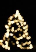 23rd Nov 2013 - I'm dreaming of a white Christmas ....