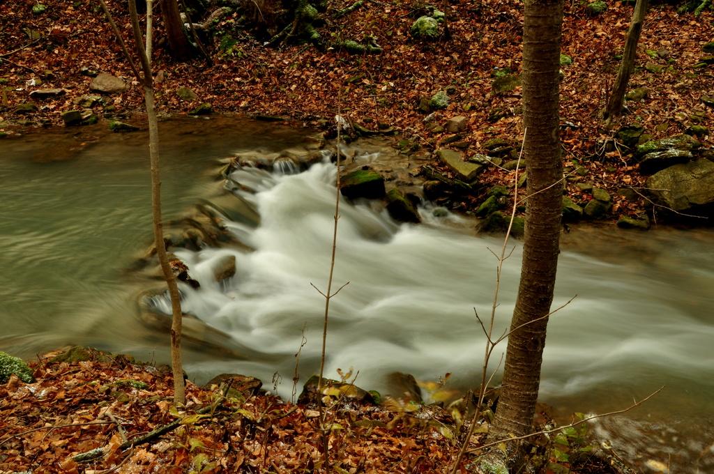 Waterfall in November by jayberg