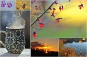 24th Nov 2013 - Sunday Morning Collage