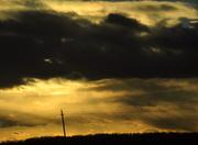 "26th Nov 2013 - Utility pole...""Home alone"""