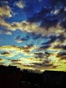 26th Nov 2013 - Dans ma rue...