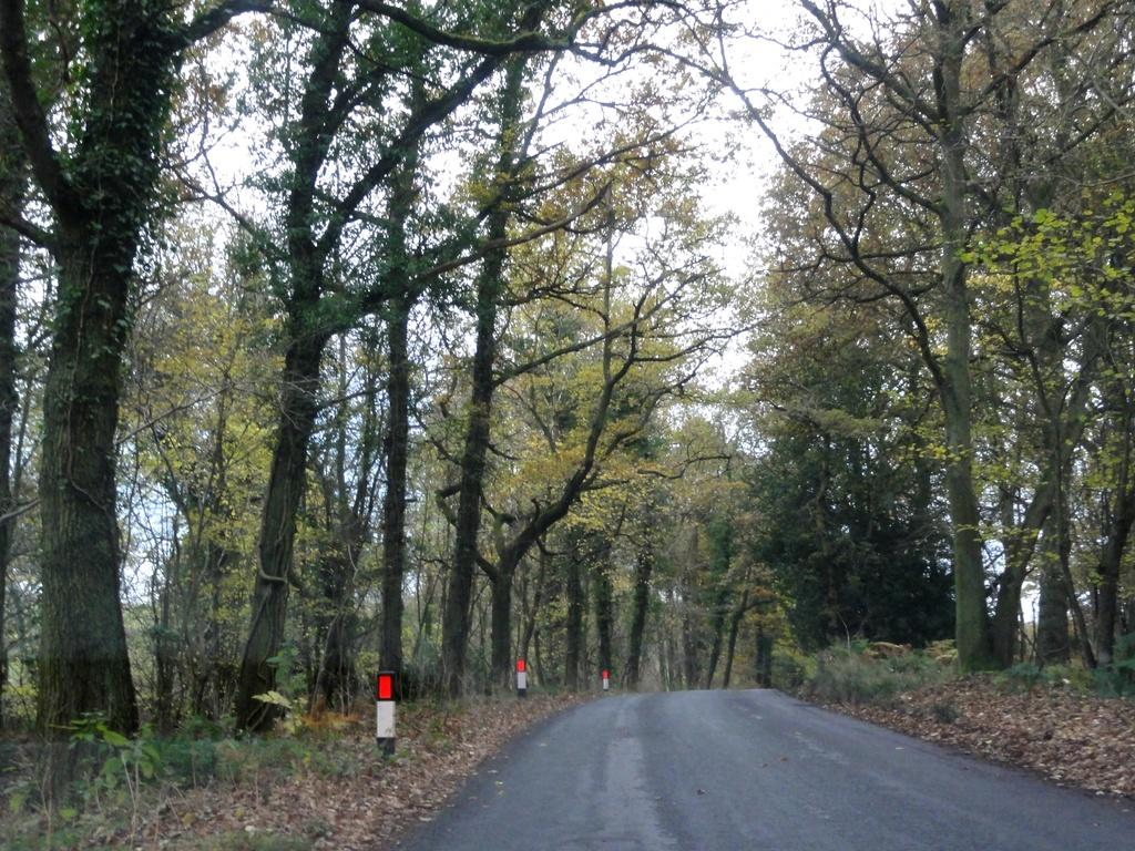 All around the Wrekin  by beryl