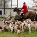 Hounds and huntsman -28-11 by barrowlane