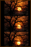 1st Dec 2013 - The Sun Sets on Sunday