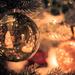 O Christmas Tree by pflaume