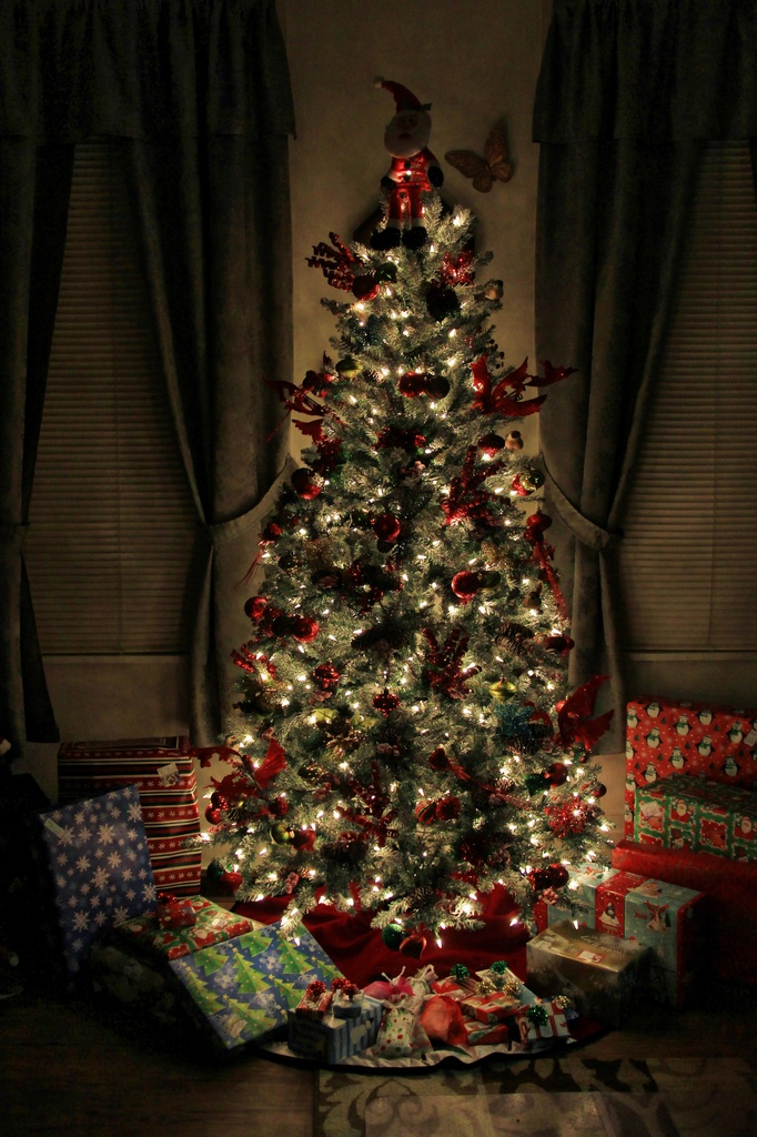 The Tradional Tree And Lights by digitalrn
