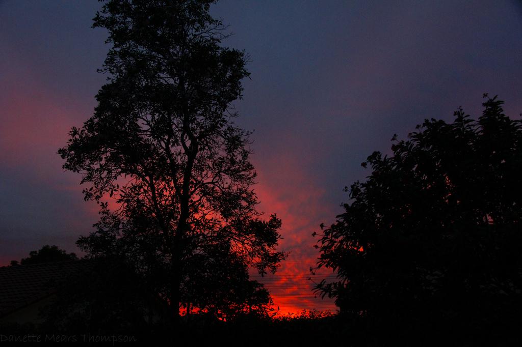Fiery sunset by danette