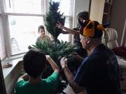 1st Dec 2013 - Assembling the tree