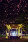 3rd Dec 2013 - White Point Gardens gazebo