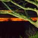 Sky At Night by tonygig