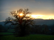 9th Dec 2013 - Just as the sun was going down....