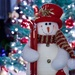 10th December 2013 - Frosty the Snowman by pamknowler