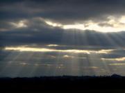 10th Dec 2013 - Sun rays....
