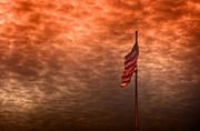10th Dec 2013 - Flag Flies in Dallas
