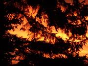 13th Dec 2013 - The setting sun......